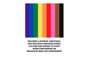 text that says Building A Diverse, Equitable, and Inclusive Organizational Culture And Where To Start When Considering An Organizational DEI Assessment